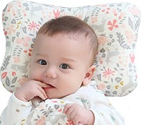 WelLifes Baby Pillow for flat head