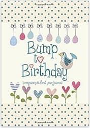 Pregnancy & First-Year Baby Journal