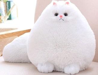 Winsterch Kids Cat Stuffed Animal